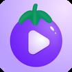 qzdsp茄子抖音短视频安卓版